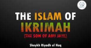 islam of ikrimah